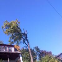 img-20121011-00354